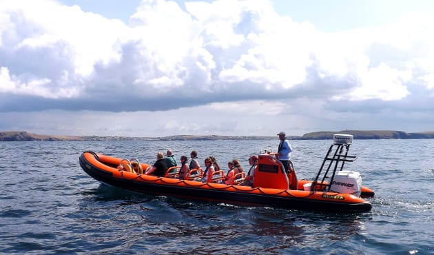 RIB boat tours in Padstow